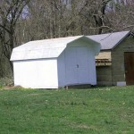 Forest-shed